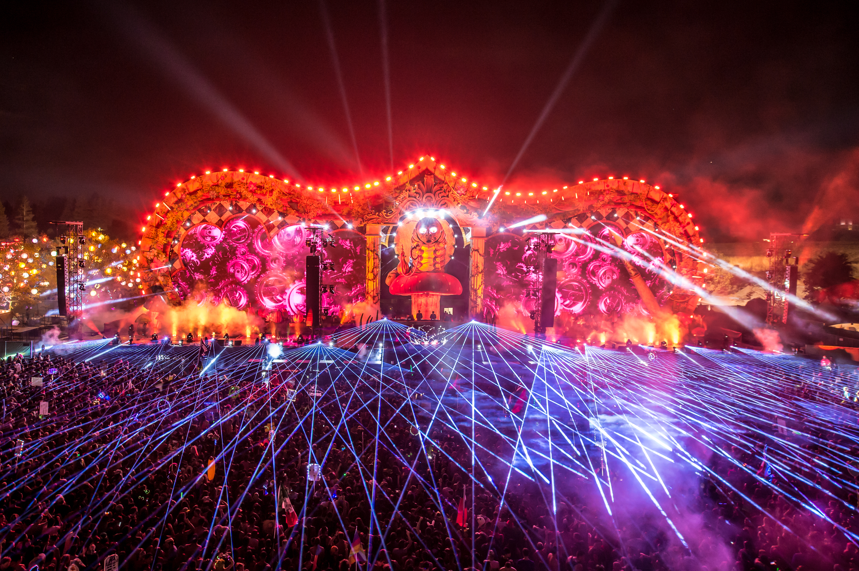 Beyond Wonderland Review